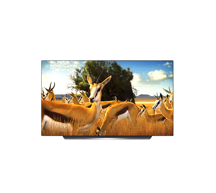 [렌탈] LG 올레드 TV AI ThinQ 55인치 OLED55CXF / 월49,900원